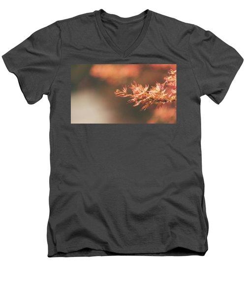 Spring Or Fall Men's V-Neck T-Shirt