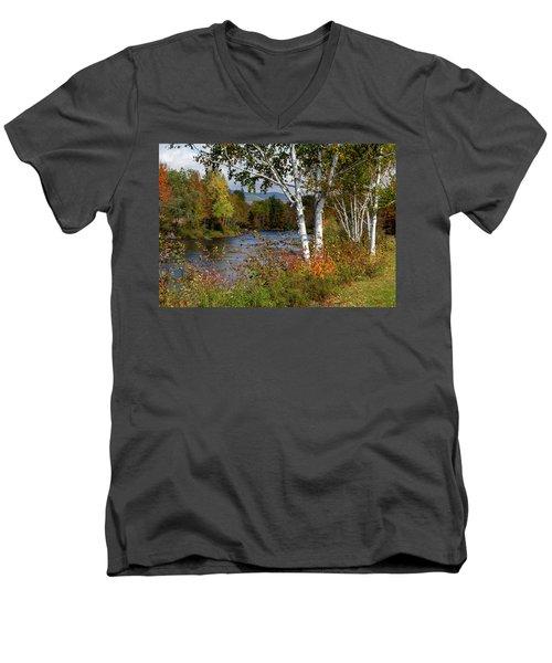 Stark, Nh Fall White Birch  Men's V-Neck T-Shirt
