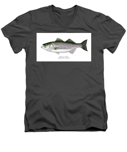 Striped Bass Men's V-Neck T-Shirt