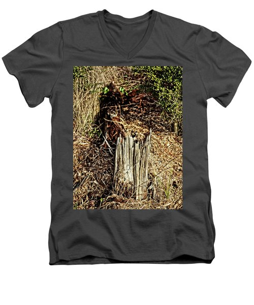 Stump In Swamp Men's V-Neck T-Shirt