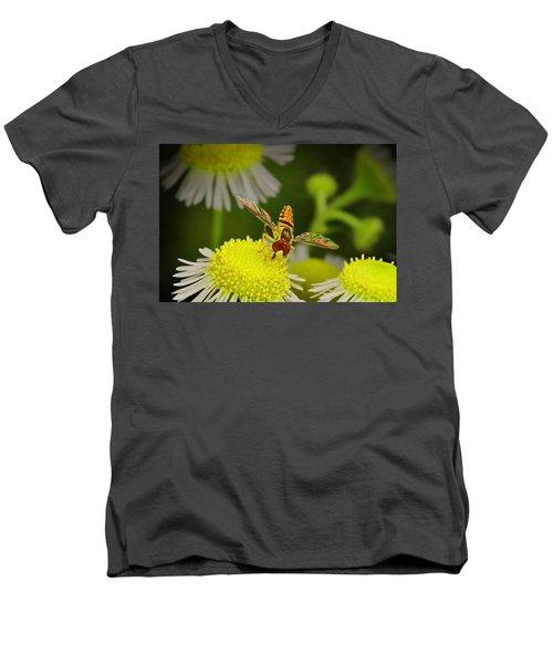 Sugar Bee Wings Men's V-Neck T-Shirt
