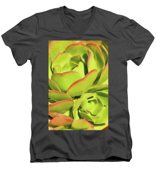 Sweet Succulents I Men's V-Neck T-Shirt