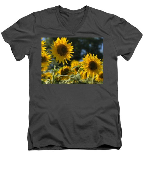 Sweet Sunflowers Men's V-Neck T-Shirt