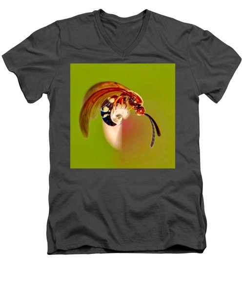Swirly Wasp Men's V-Neck T-Shirt