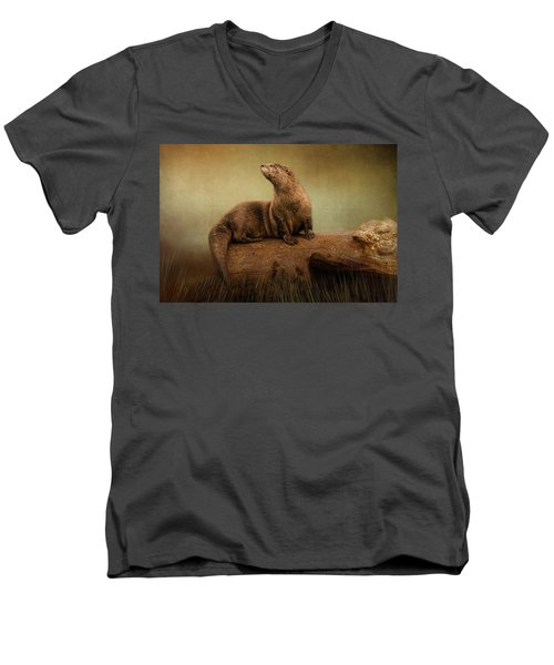 Taking In The View Men's V-Neck T-Shirt