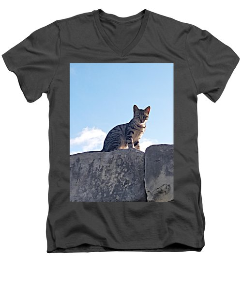 The Cat Men's V-Neck T-Shirt