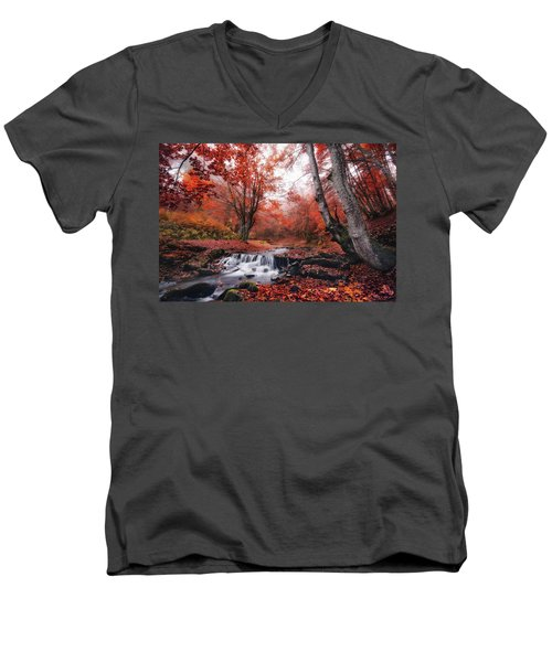 The Delights Of Late Autumn Men's V-Neck T-Shirt