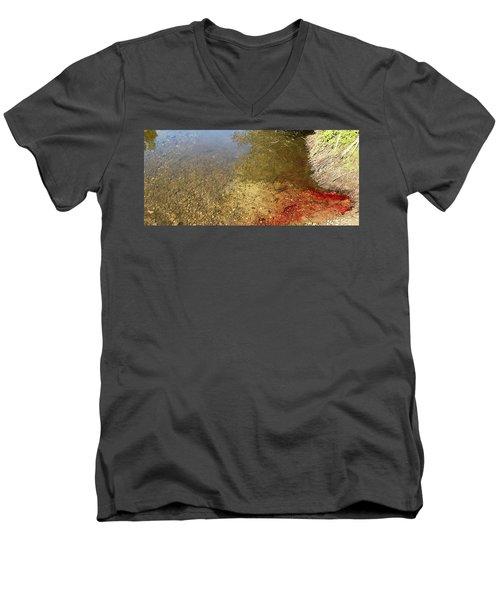 The Earth Is Bleeding Men's V-Neck T-Shirt