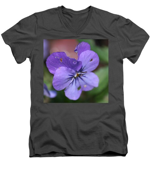 The Raggedy Viola Men's V-Neck T-Shirt