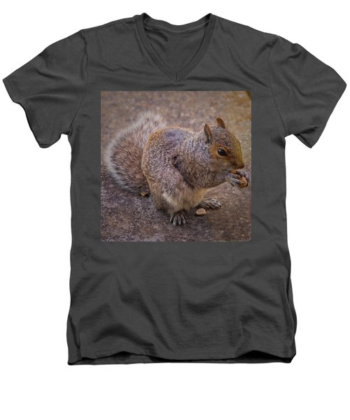 The Squirrel - Cornwall Men's V-Neck T-Shirt