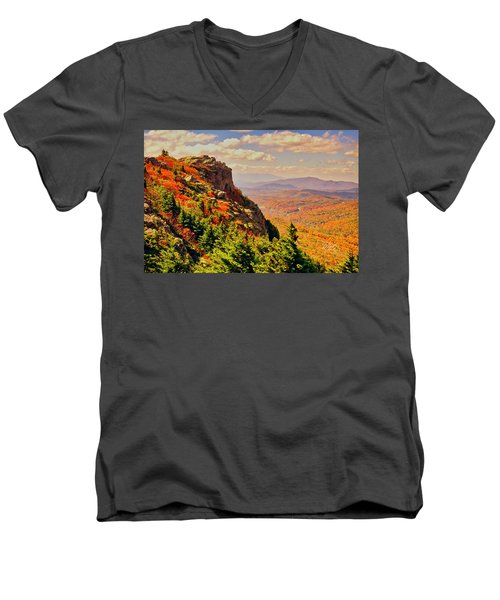 The Summit In Fall Men's V-Neck T-Shirt
