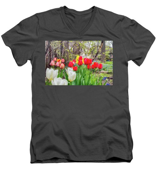 The Tulips Are Out. Men's V-Neck T-Shirt