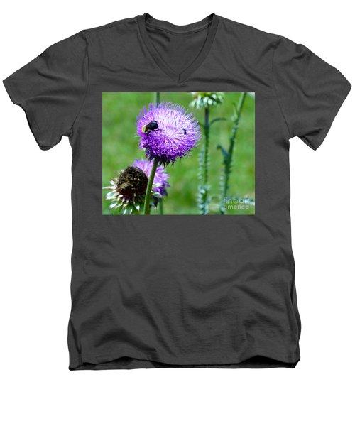 Thistle Visitors Men's V-Neck T-Shirt