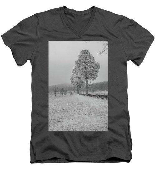 Three Sentinals Men's V-Neck T-Shirt