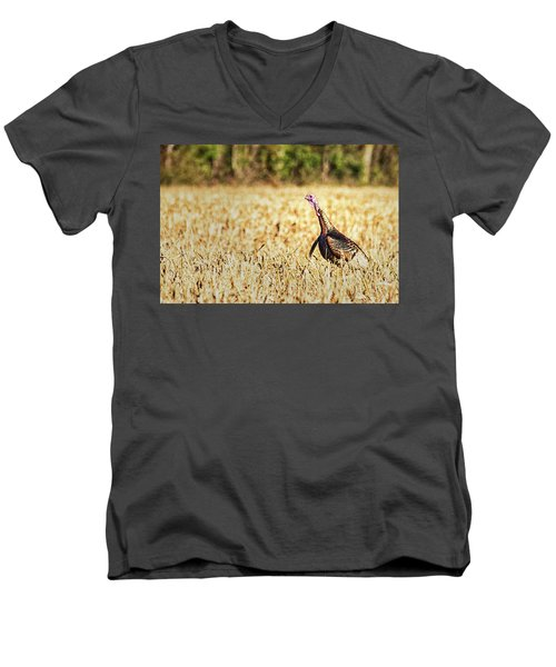 Tom Turkey Men's V-Neck T-Shirt