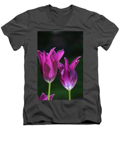 Translucent Tulips Men's V-Neck T-Shirt