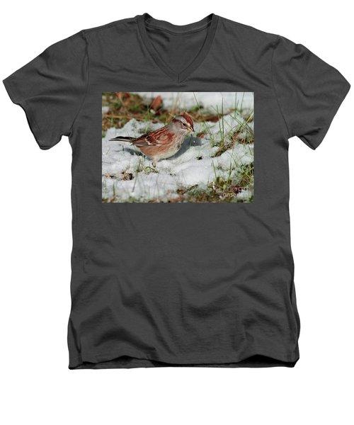 Tree Sparrow In Snow Men's V-Neck T-Shirt