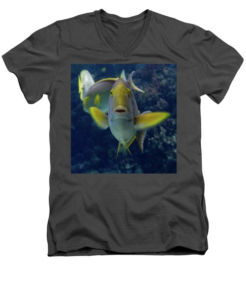 Men's V-Neck T-Shirt featuring the photograph Tropical Fish Poses. by Anjo Ten Kate