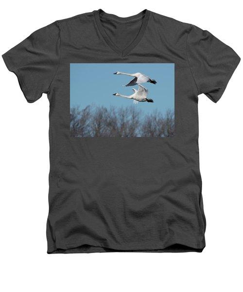Tundra Swan Duo Men's V-Neck T-Shirt