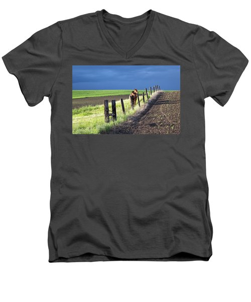 Two Horses In The Palouse Men's V-Neck T-Shirt
