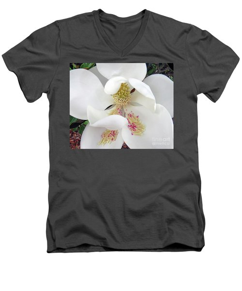 Unfolding Beauty Of Magnolia Men's V-Neck T-Shirt