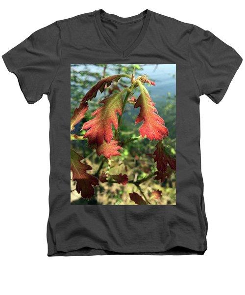 Velvet New Oak Leaves Men's V-Neck T-Shirt