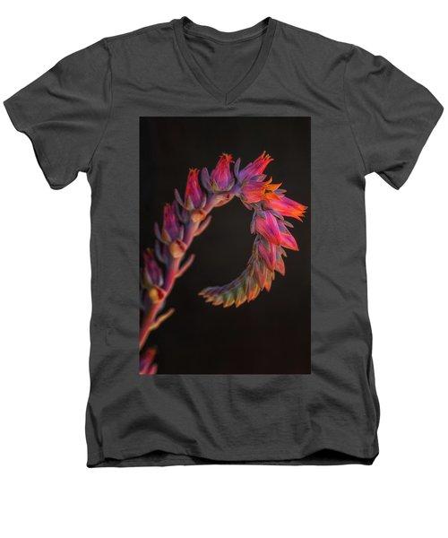 Vibrant Arc Men's V-Neck T-Shirt