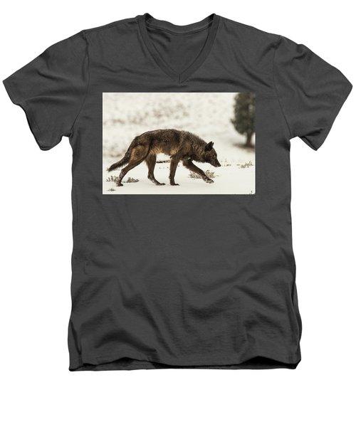 W13 Men's V-Neck T-Shirt