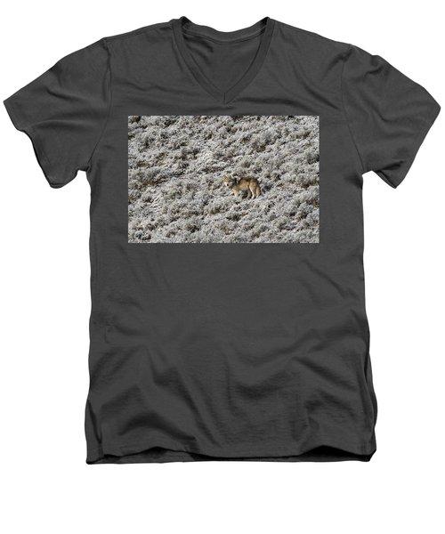 W17 Men's V-Neck T-Shirt