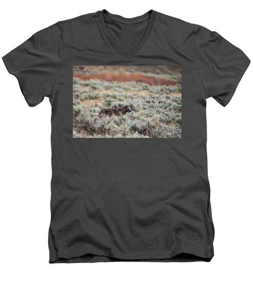 W30 Men's V-Neck T-Shirt