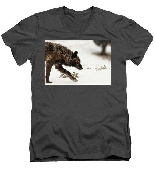 W41 Men's V-Neck T-Shirt
