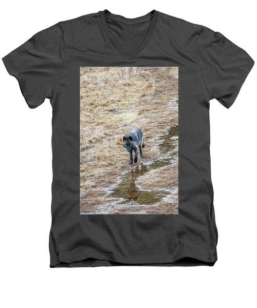 W51 Men's V-Neck T-Shirt