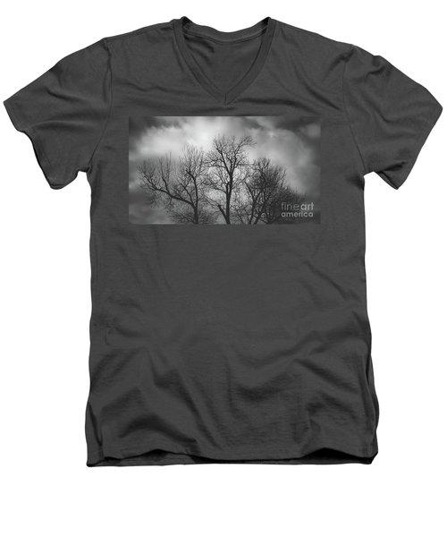 Waiting Bird Men's V-Neck T-Shirt