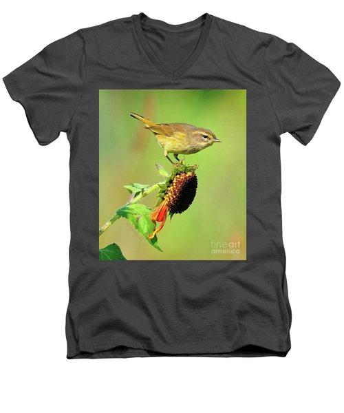 Warbler Men's V-Neck T-Shirt
