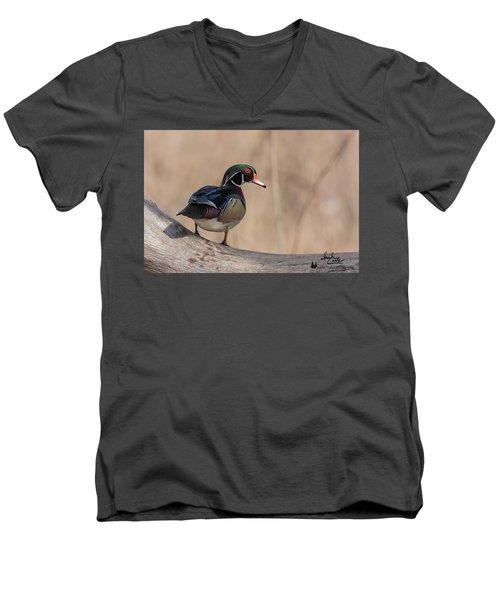 Watchful Wood Duck Men's V-Neck T-Shirt