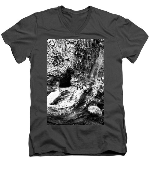 Weathered Stump Men's V-Neck T-Shirt