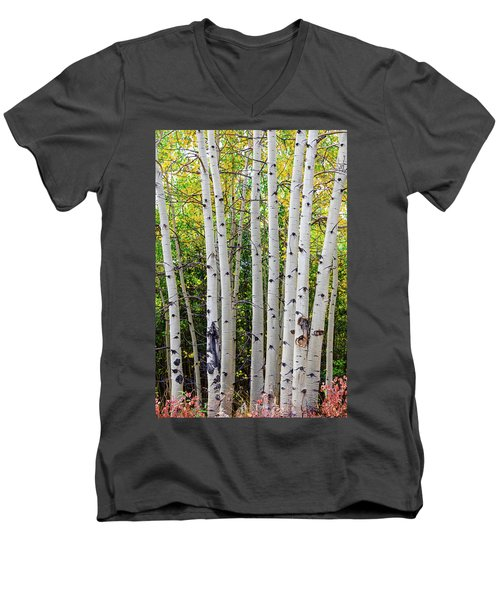 Men's V-Neck T-Shirt featuring the photograph White Bark Golden Forest by James BO Insogna