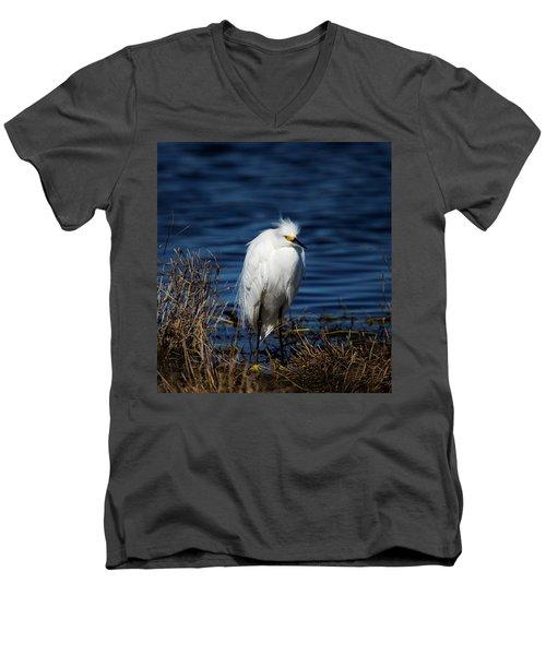 White Egret Men's V-Neck T-Shirt