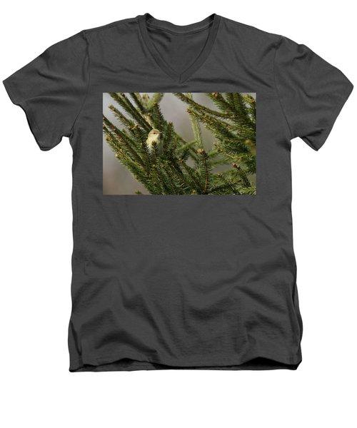 Willow Warbler Men's V-Neck T-Shirt
