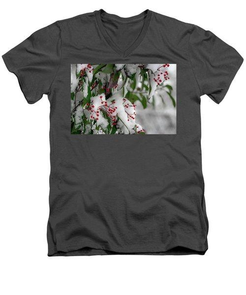 Winter Berries Men's V-Neck T-Shirt