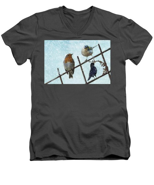 Winter Birds Men's V-Neck T-Shirt