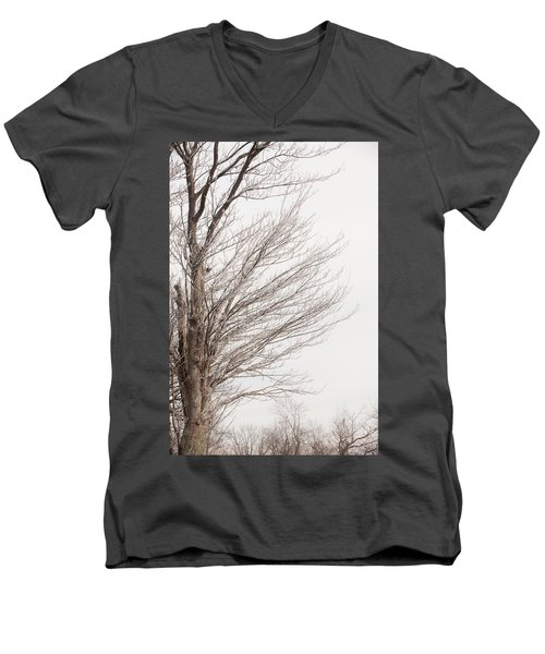 Winter Hoarfrost Men's V-Neck T-Shirt