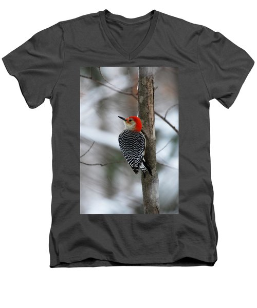 Winter Visitor Men's V-Neck T-Shirt