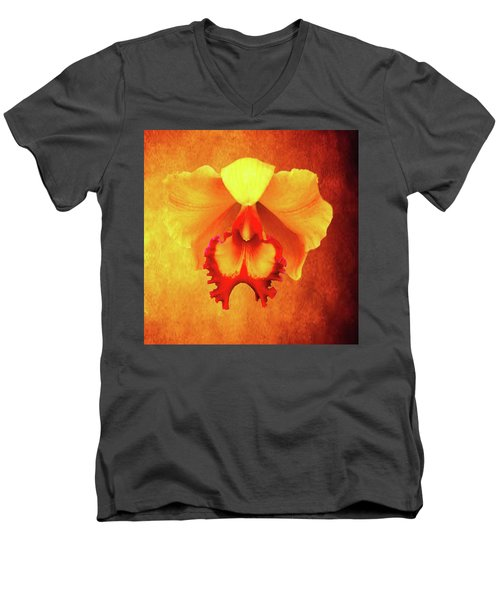 Yellow Exotic Men's V-Neck T-Shirt