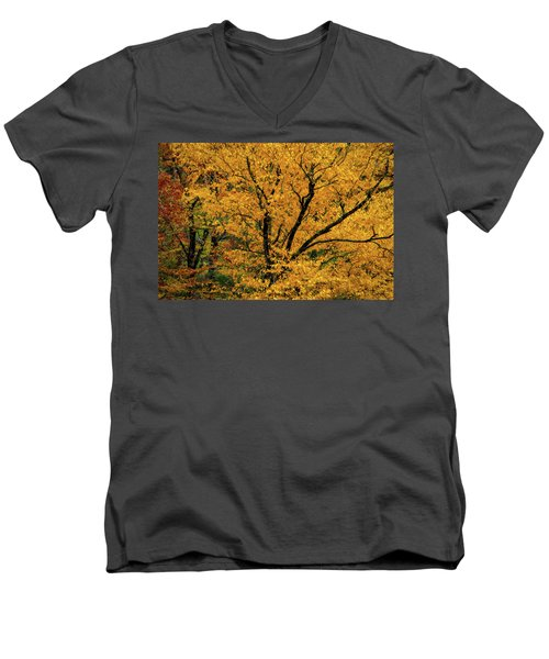 Yellow Tree Leaf Brilliance  Men's V-Neck T-Shirt