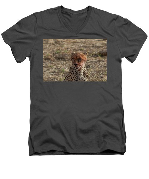 Young Cheetah Men's V-Neck T-Shirt