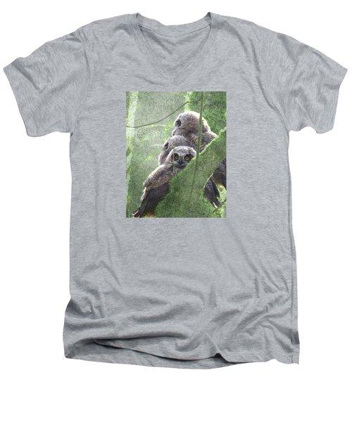 Harbingers Of Spring Men's V-Neck T-Shirt by I'ina Van Lawick