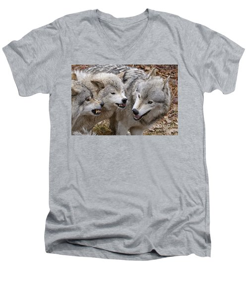 Men's V-Neck T-Shirt featuring the photograph  Alpha Displeasure 2 by Wolves Only