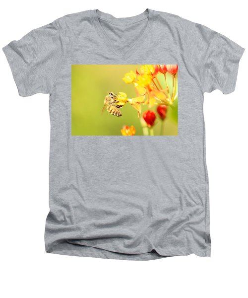 Men's V-Neck T-Shirt featuring the photograph  Bee On Milkweed by Greg Allore