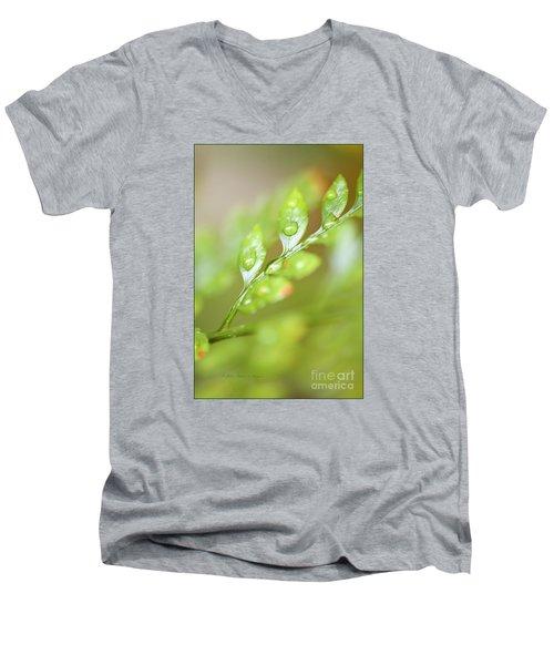 Fern Fronds Men's V-Neck T-Shirt